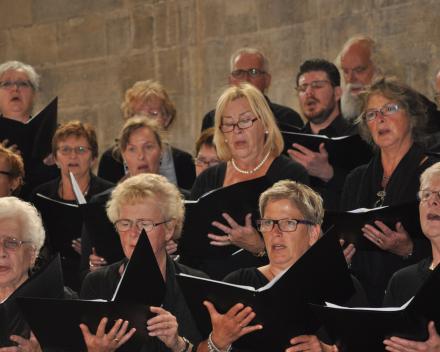 zingen in de Stephansdom Wenen