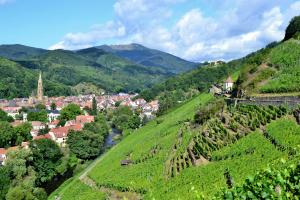 Koorreis Reims- de Champagne